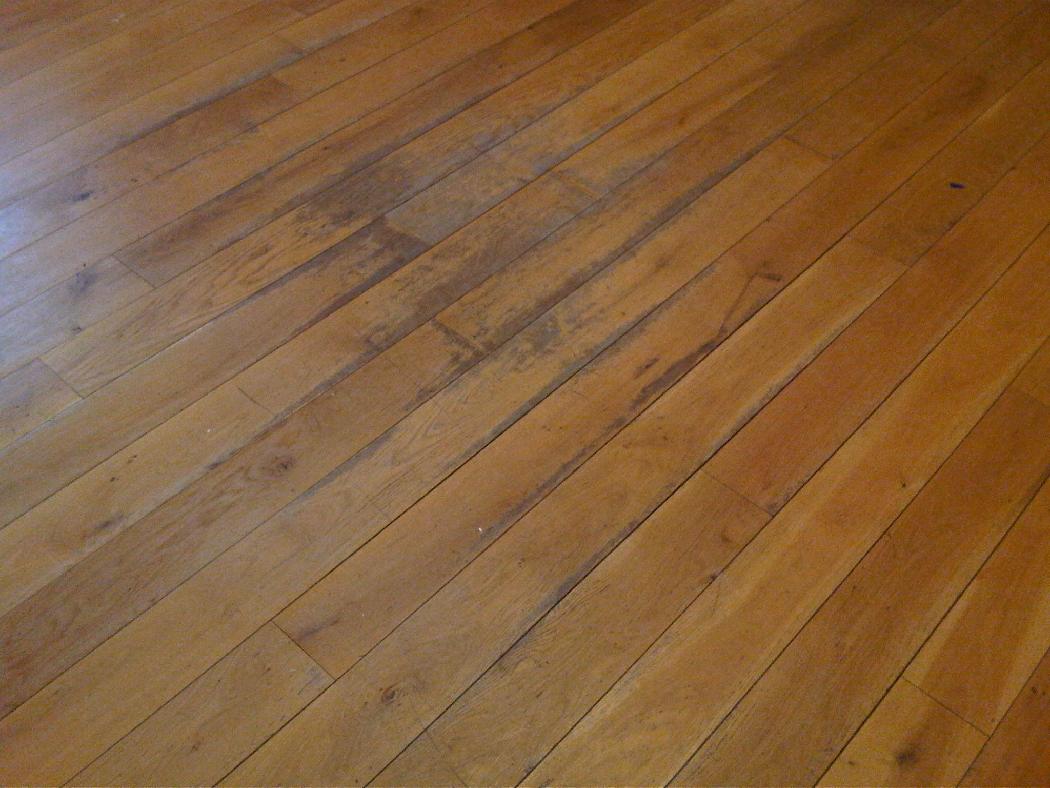 View Pictures And Photos For Paul Curran Hardwood Floors
